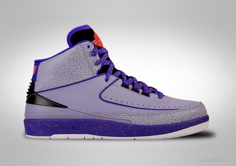NIKE AIR JORDAN 2 RETRO IRON PURPLE